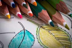 Afbeelding voor categorie Kleurplaten