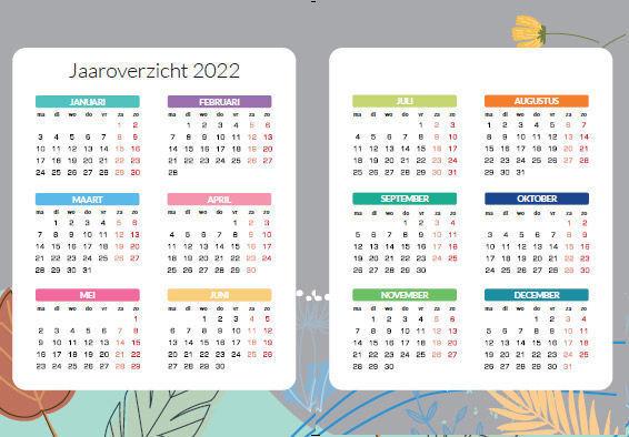 Voorbeeld jaaroverzicht 2022